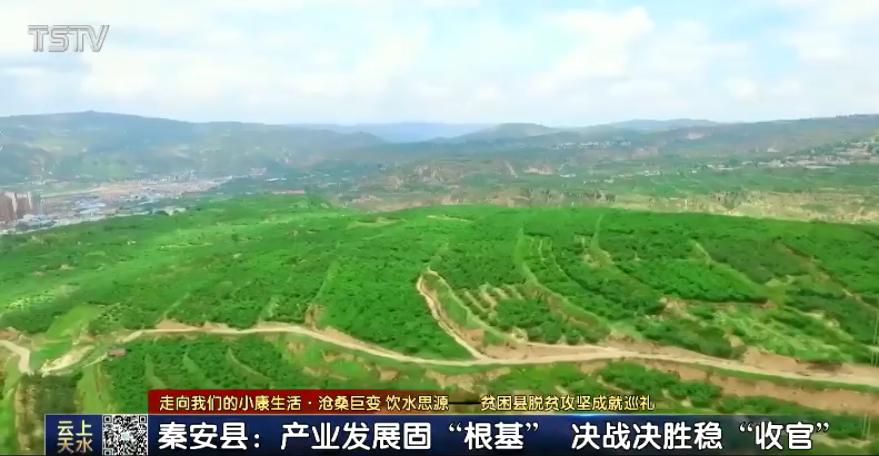 秦州:落实好河湖长制统筹推进藉河全流域综合治理